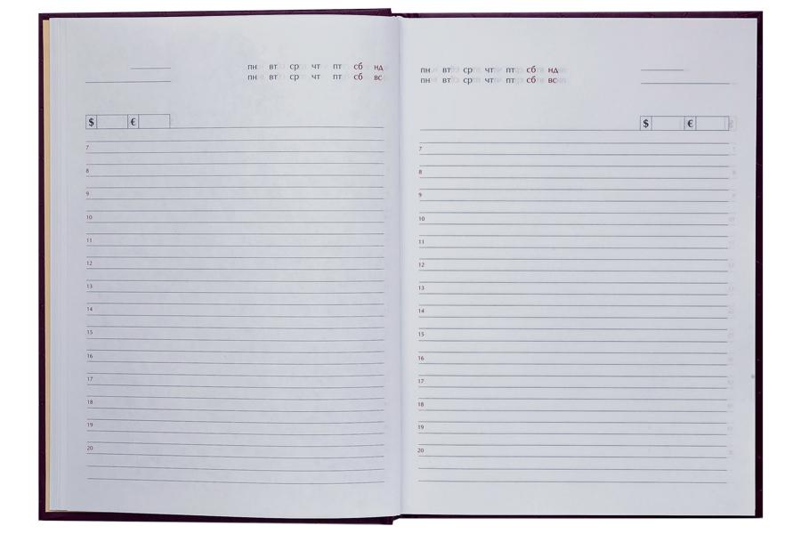 Ежедневник не датированный Expert, 150*205мм., 144л., бумвинил, линейка, бордо BuroMax - фото 5